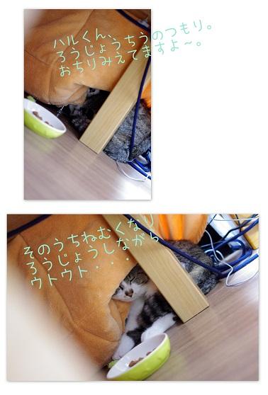 4 (2).jpg