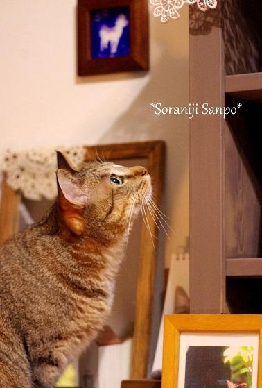 soraaniji sanpo161122-2.jpg