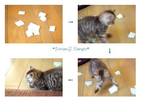 soraniji sanpo081201-5 - コピー.jpg
