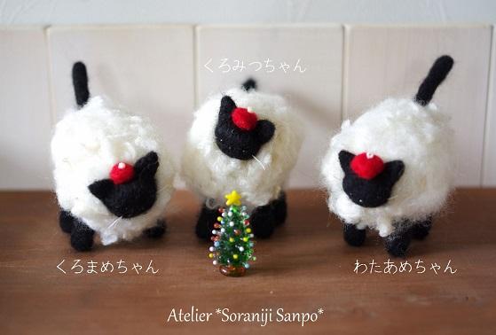 羊猫2.jpg